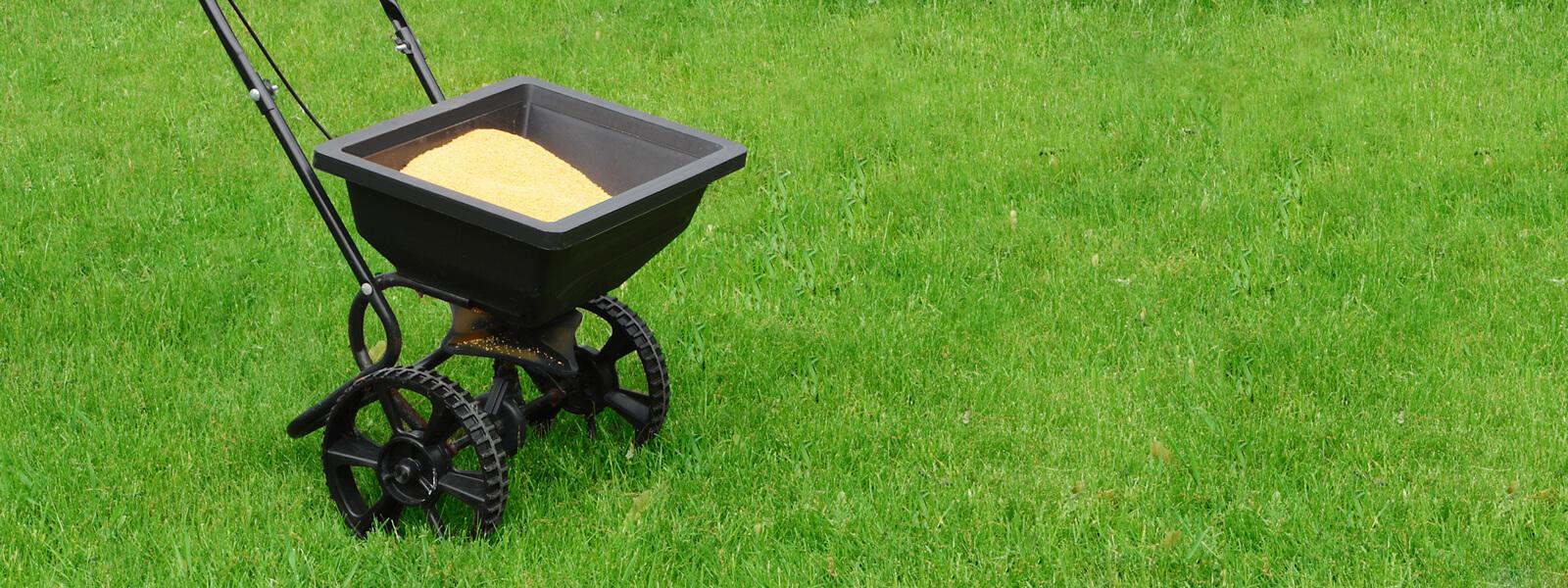 Lawn Feeding, Lawn Fertiliser & Lawn Treatment Plans
