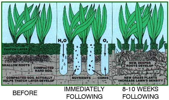 aeration infographic