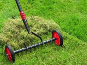 Moss Removal & Moss Control