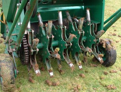 Autumn Lawn Repair